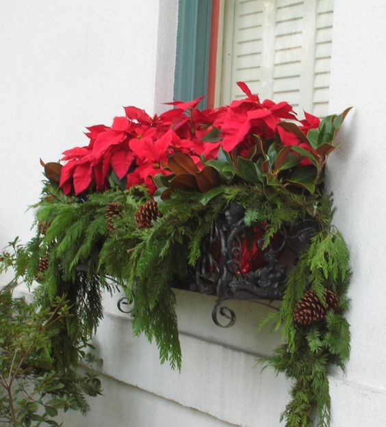 Vánoční okna - Obrázek č. 22