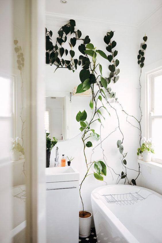 Krásné kousky do koupelny - Obrázek č. 97