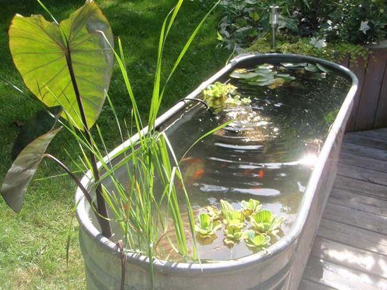 Okrasná zahradní jezírka - Obrázek č. 3