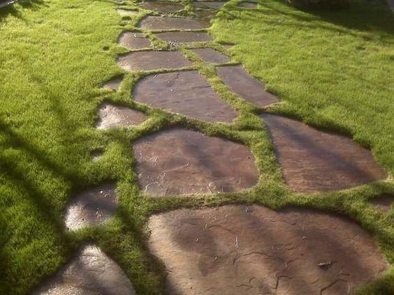 Zahradní chodníček - inspirace z internetu - Obrázek č. 39
