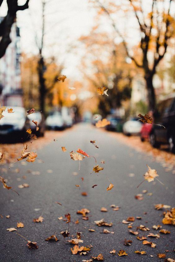 Podzimní blues - Obrázek č. 44