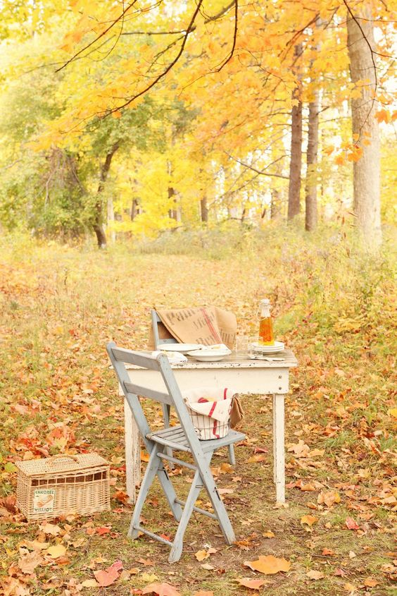 Podzimní blues - Obrázek č. 75