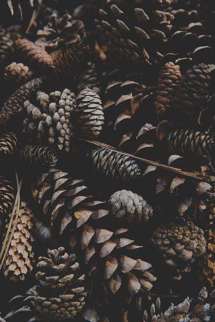 Podzimní blues - Obrázek č. 90