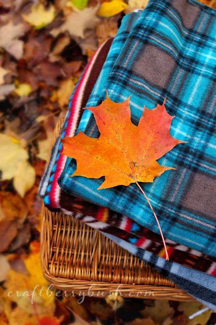 Podzimní blues - Obrázek č. 37