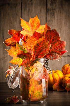 Podzimní dům - Obrázek č. 141
