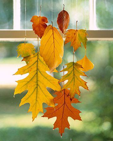 Podzimní dům - Obrázek č. 170