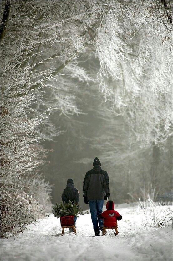 Hřejivé zimní pohlazení - Obrázek č. 46