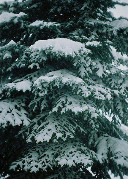 Hřejivé zimní pohlazení - Obrázek č. 83