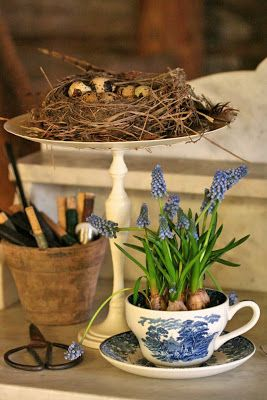 První jarní vlaštovky na vesnici - Obrázek č. 53