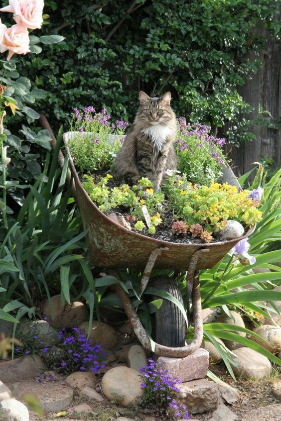 Zahradní inspirace - Obrázek č. 10