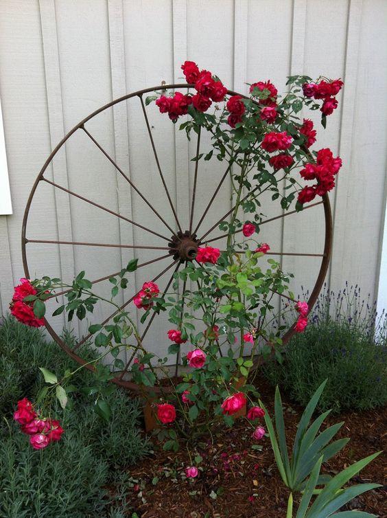 Zahradní inspirace - Obrázek č. 47