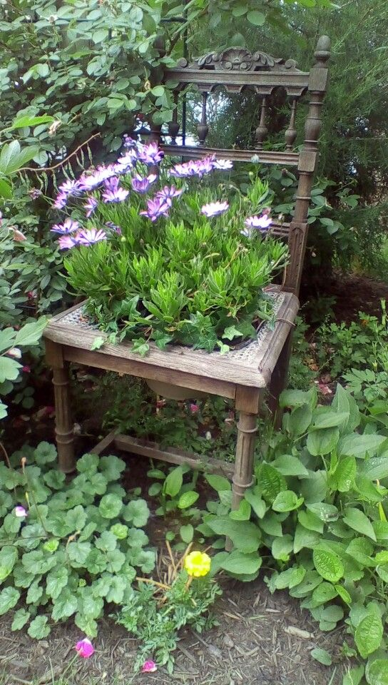 Zahradní inspirace - Obrázek č. 49