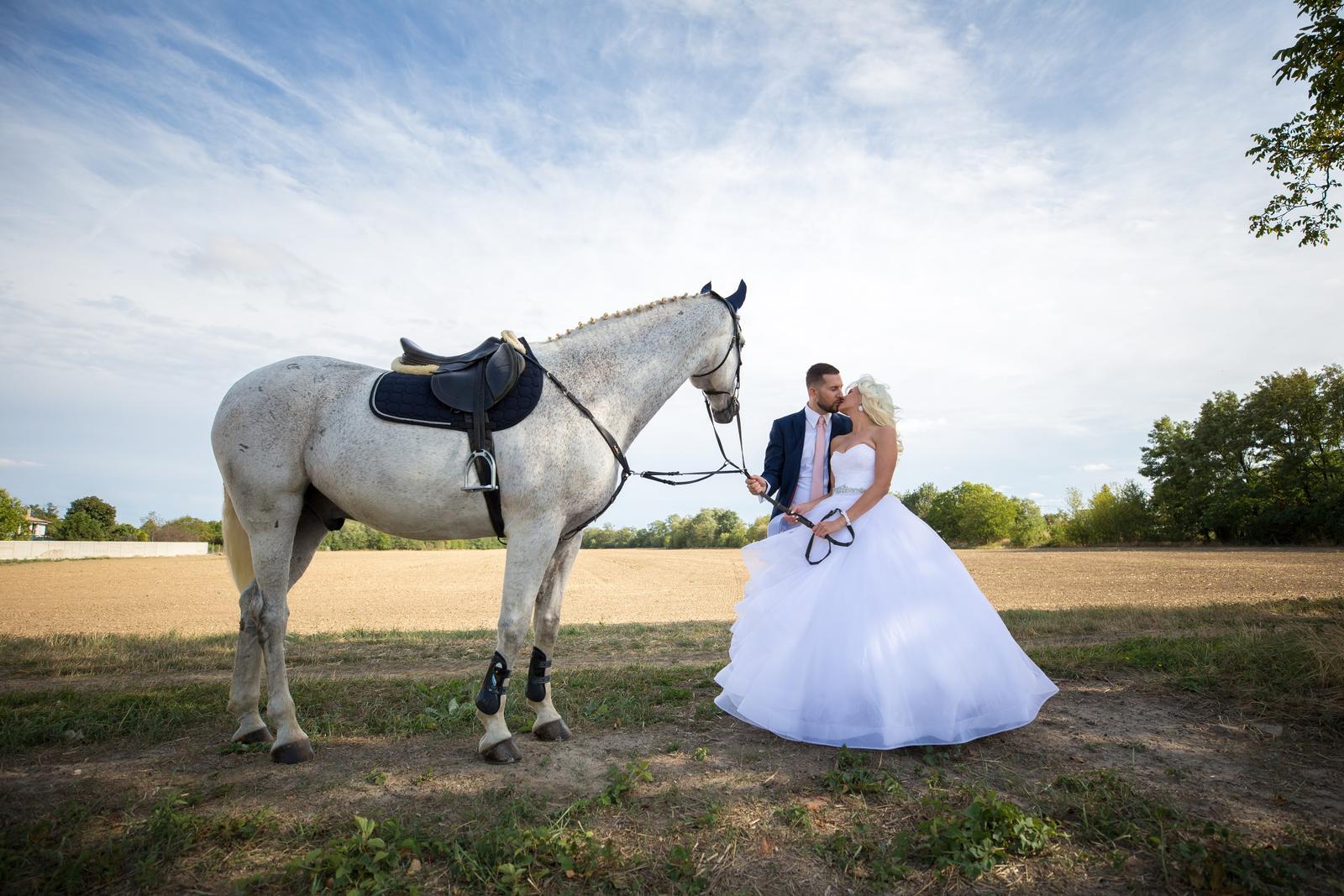 Naša krásna svadba bola... - Obrázok č. 1