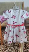 Motýlikové šaty, 104
