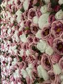 kvetinová fotostena,