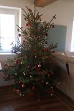 prvý stromček v našom domčeku