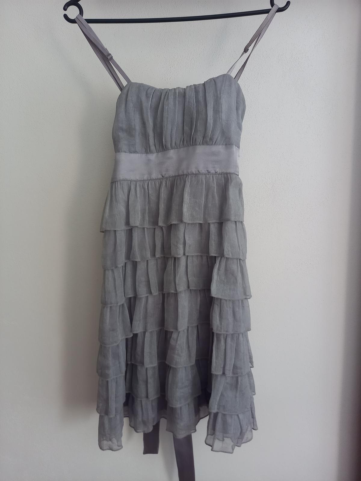 stribrnosede šaty - Obrázek č. 1