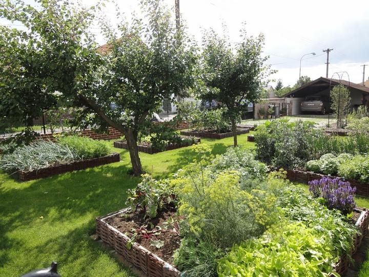 Terasa a zahrada - inšpirácie - Obrázok č. 77
