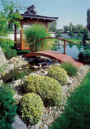 Záhrada-inšpirácie - Obrázok č. 41