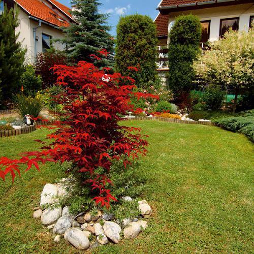 Záhrada-inšpirácie - Obrázok č. 37