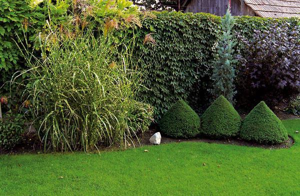 Záhrada-inšpirácie - Obrázok č. 40