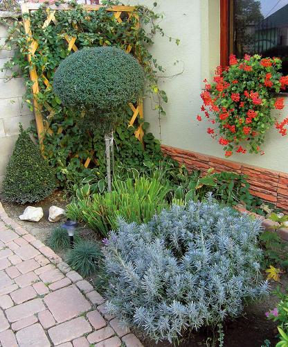 Záhrada-inšpirácie - Obrázok č. 75