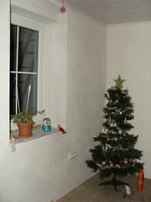 Náš veľký stromček :) Ten maličký sob je zachraňovaný 3x denne z pelíška :(