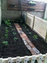 Zostáva ešte dokončiť a nafarbiť plot a dúfať že to sadeničky zvládnu.