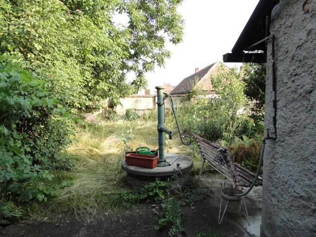 Domov - Záhradka