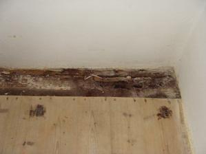 Asi 10% podlahy muselo ísť von, našťastie to bolo po obvodoch miestnosti, tak v nej teraz máme skladisko. Zvyšok dreva paráda - okrem diskolorizácie žiadna pleseň, vlhkosť...