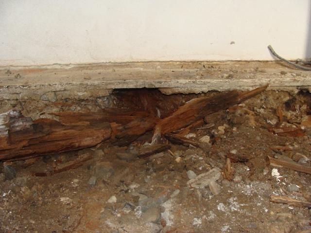 Domov - Našťastie iba namáhaná časť pri vstupe bola spráchnivená, hlina bola suchá