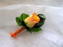 Něco pro broučka, růžička bude oranžová