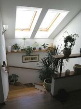 střešní okna budou pouze nad schodištěm