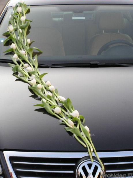 Opět tulipány