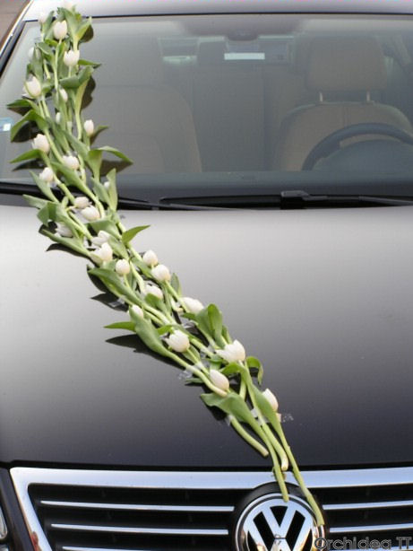 Autocorso něvěsty i ženicha - opět tulipány