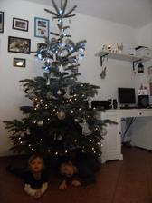 vánoční stromeček 2011