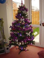 Náš vianočný stromček z minulého roku