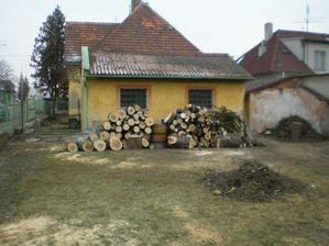 Aktuální stav zahrady, stromy byly pryč během dvou dnů