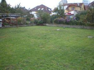 Takhle se nám pravidelným sekáním a výsevem trávy zatravnila zahrada, už je to jiný pohled:-).