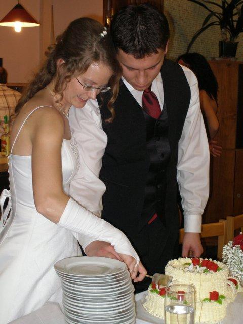 Jana{{_AND_}}Martin Švadlenkovi - krájení dortu