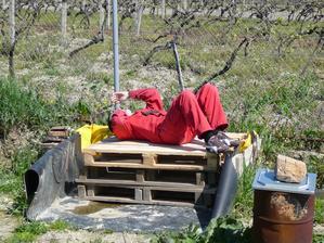 poobedna siesta na paletach