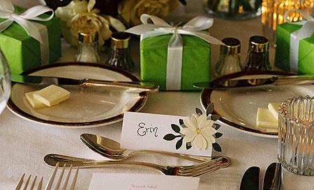 19. 8. 2006 Lednice - pekne zelene darecky