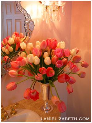 19. 8. 2006 Lednice - tulipany na stul
