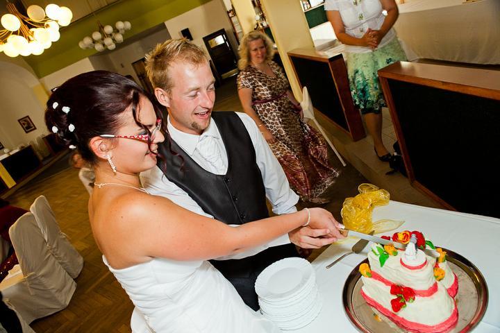 Svatební hostina  v Hotelu Svornost - Obrázek č. 60