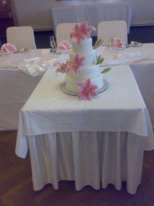 Svatební hostina  v Hotelu Svornost - Obrázek č. 70