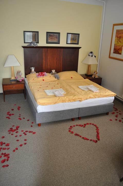 Svatební hostina  v Hotelu Svornost - Obrázek č. 74