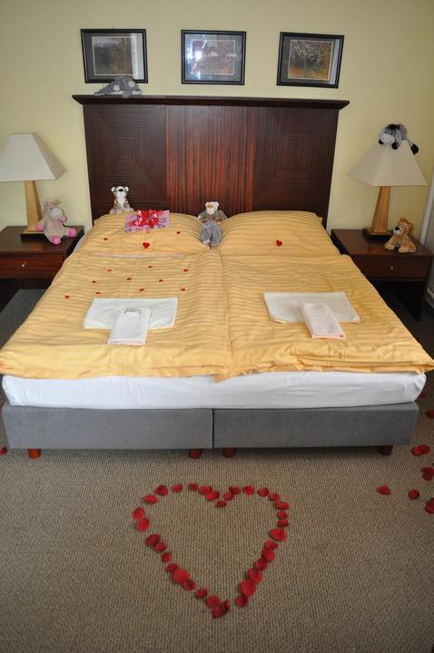 Svatební hostina  v Hotelu Svornost - Obrázek č. 73