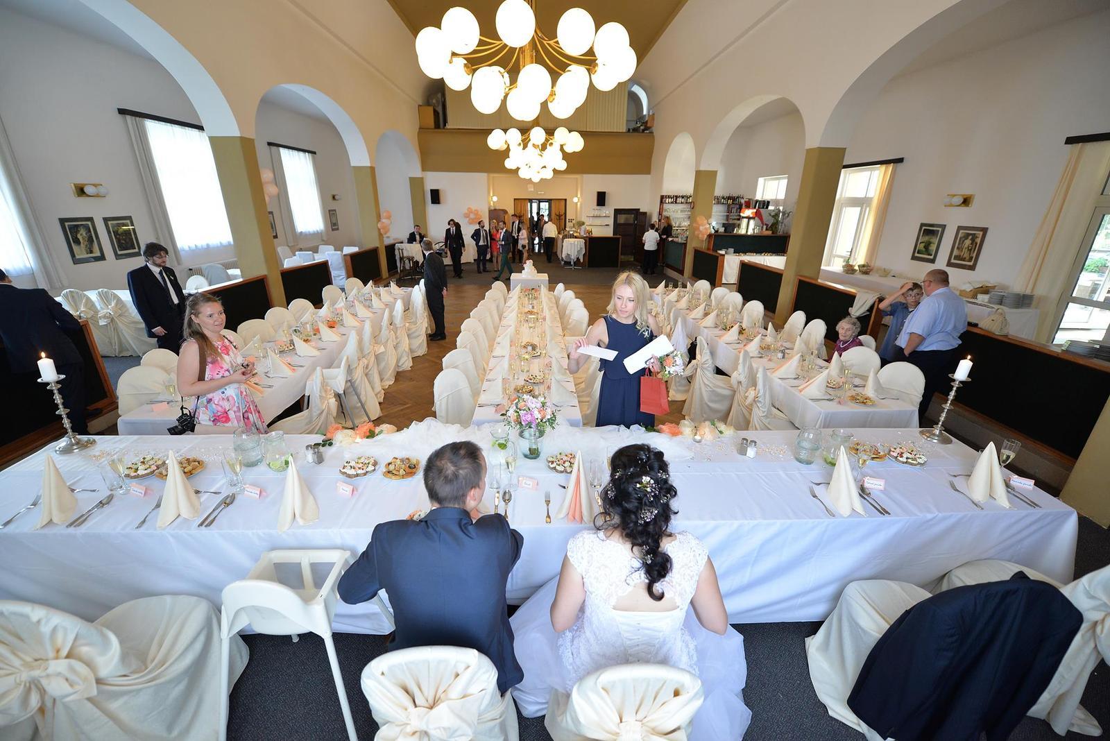 Svatby 2017 - Pohled novomanželů