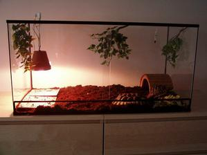 želvičky už bydlí v novém