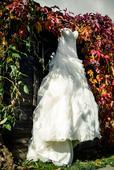 Svatební šaty Pronovias Leina, 38